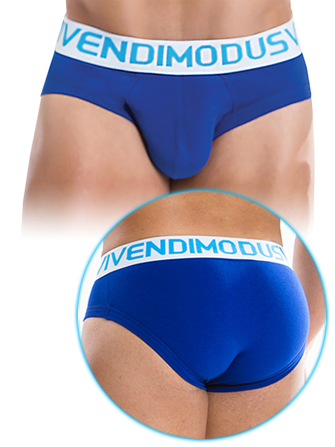 Modus Vivendi - Weekly Brief Blue
